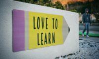 Die Kunst des Leitens X: Lernen